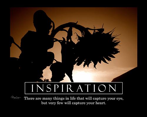 inspiration-horizontal-psd-copy-jpg-reduced
