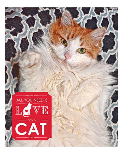 lovemycatcollage-16x20-psd-vertical-jpg-fluffy-jpg-cmyk-jpg-final-jpg-reduced
