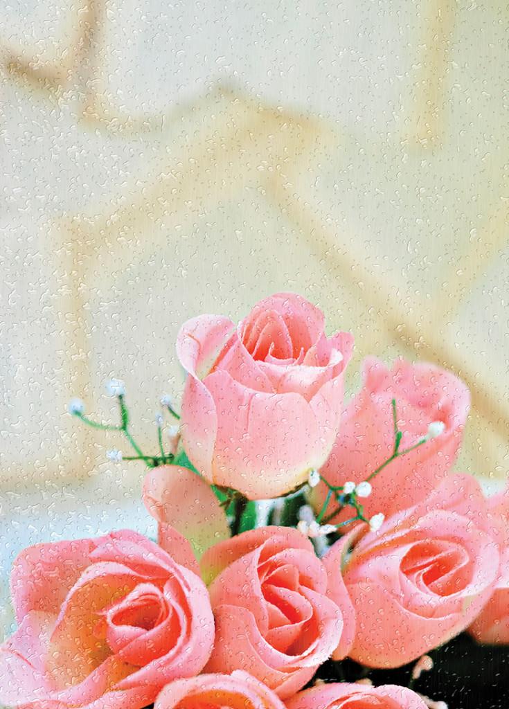 Pink Roses (2).jpg web