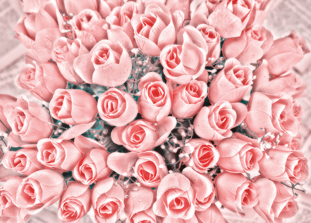 Pink Roses Bunch.jpg web