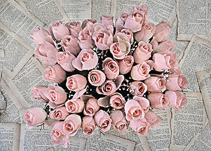 Pink Roses.jpg web